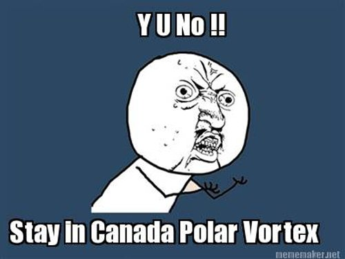 Best Polar Vortex Meme 12