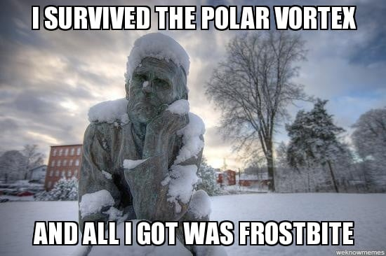 Best Polar Vortex Meme 7