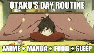Best 40 Funny Anime Memes