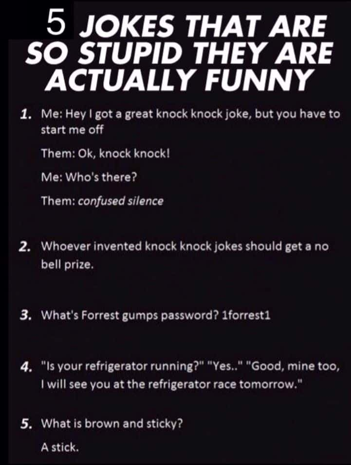 Top 22 Hilarious Stupid Jokes