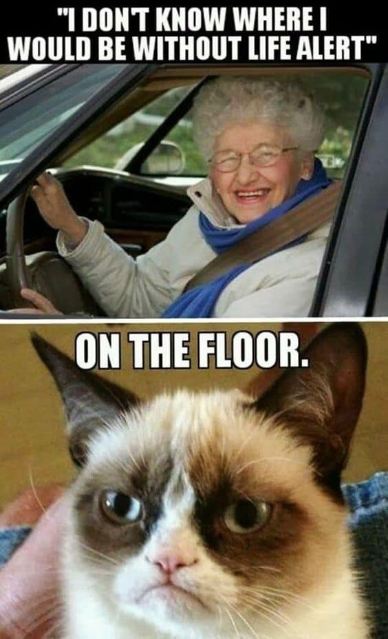 Top 23 Funny Hilarious memes