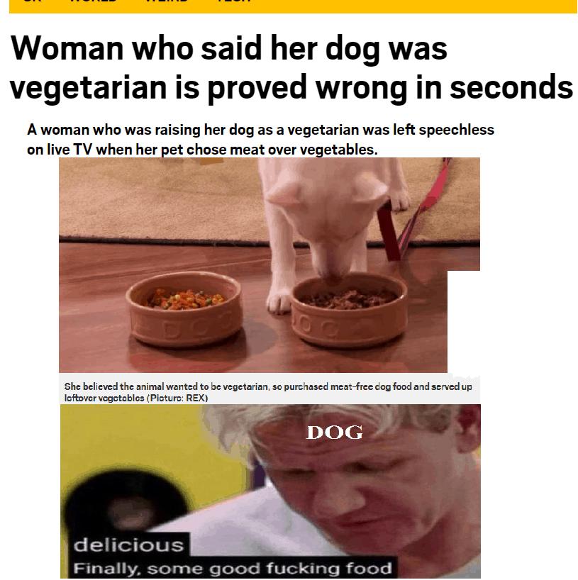 30 Relatable Memes so True LoL 2