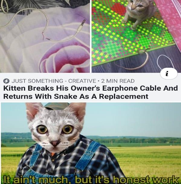 21 Relatable Memes so True 7