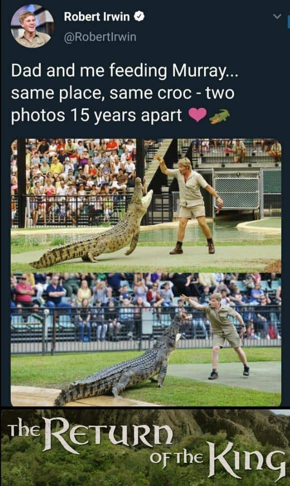 39 Relatable Dank Memes 13