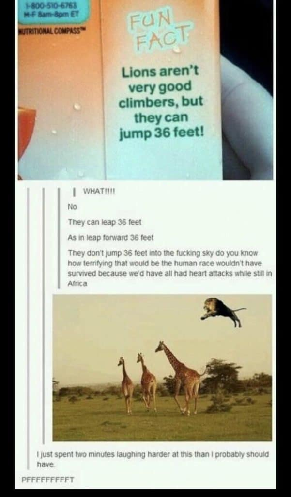 Funny Memes Hilarious Sarcasm 11