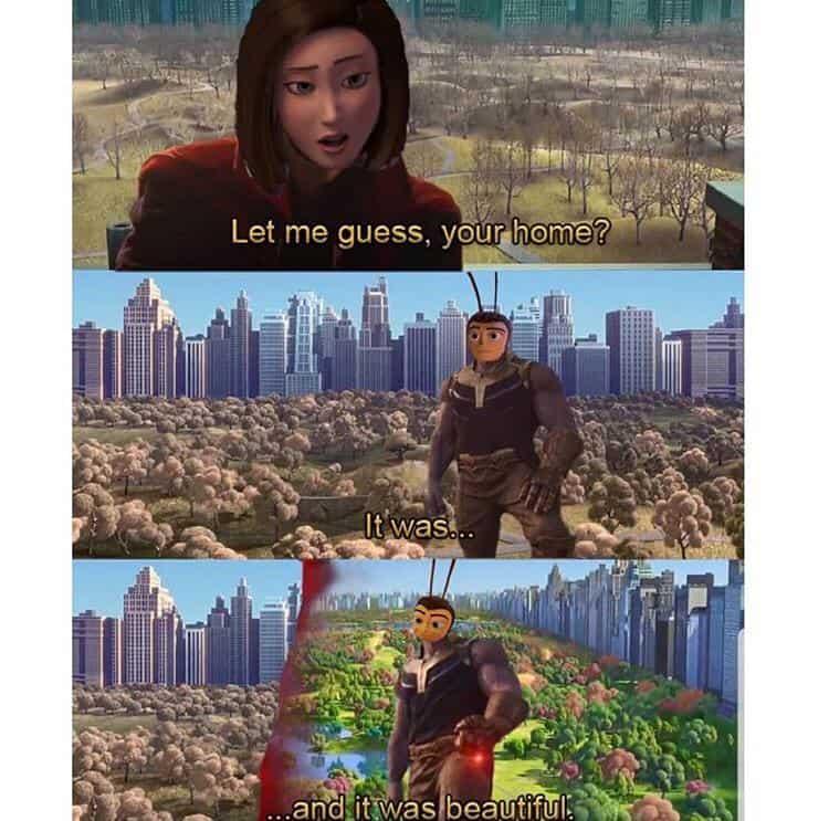 23 Funny Memes Humorous Laughing 11