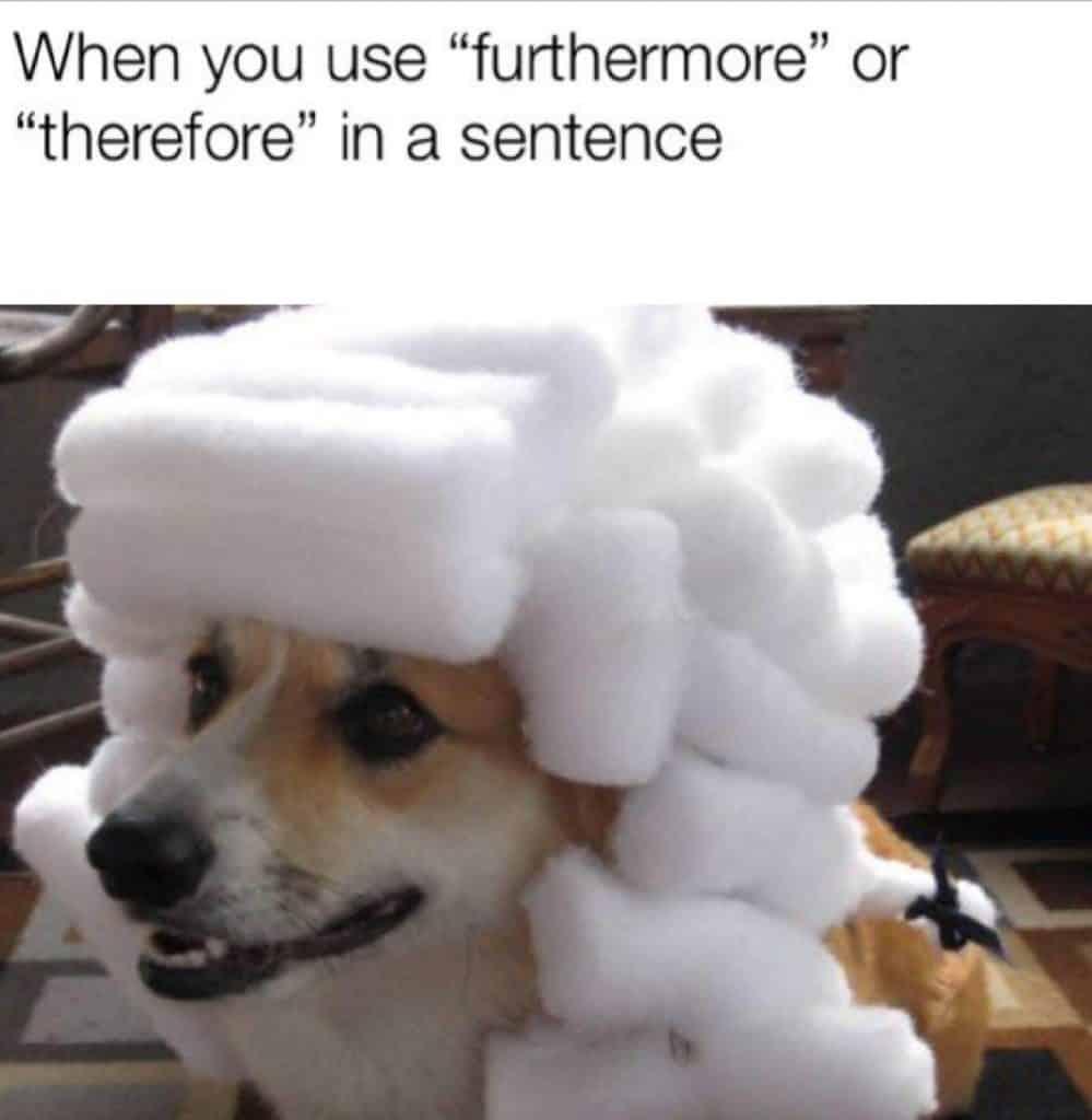 23 Funny Memes Humorous Laughing 13