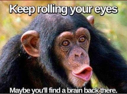 27 Funny Comebacks Memes Sarcasm 1