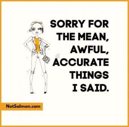 27 Funny Comebacks Memes Sarcasm 16