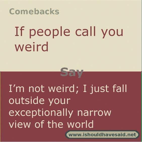33 Funny Comeback Memes 5
