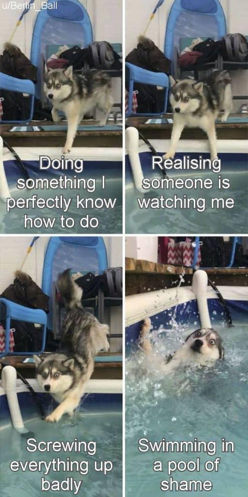 52 Funny Memes Humor Real Life Lmfao 18