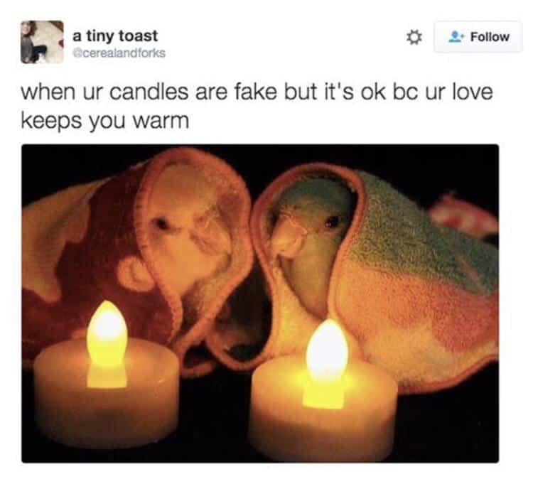 21 Funny Memes Humor Real Life Feelings 1