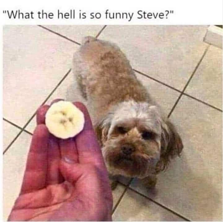 23 Hilarious Memes Humor 4