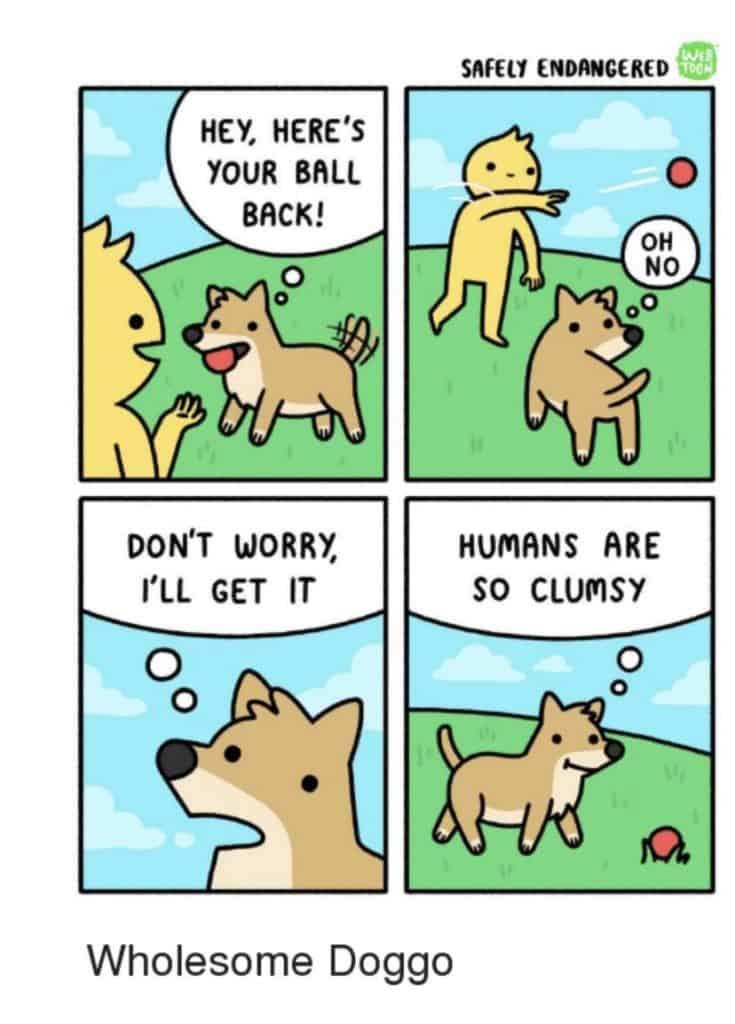 24 Funny Memes Humor Real Life Sad 14