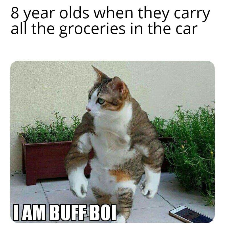 24 Funny Memes Humor Real Life Sad 15