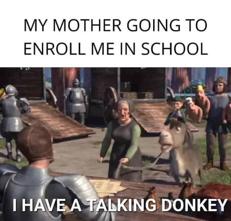 25 Funny Memes Humor Real Life Schools 5