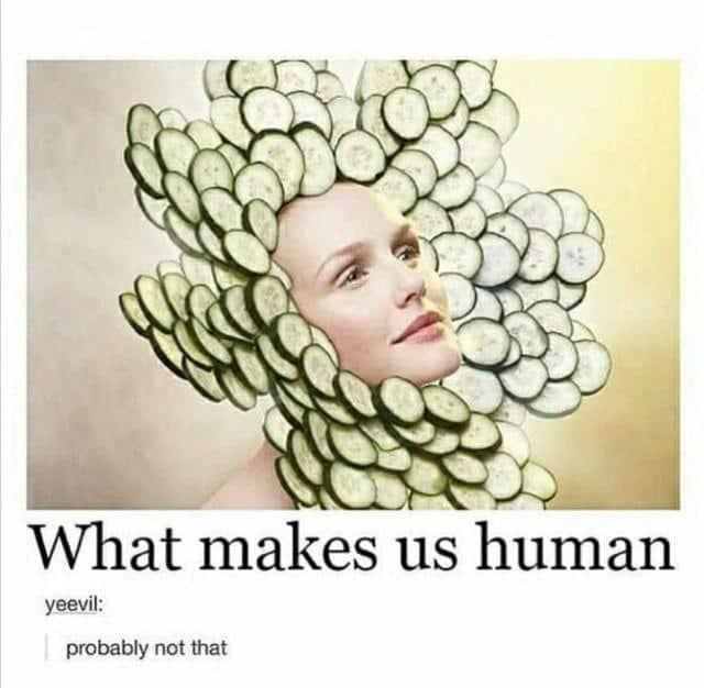 22 Memes Humor Hilarious People 19
