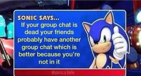 21 How Are You Not Dead Sonic Memes 1