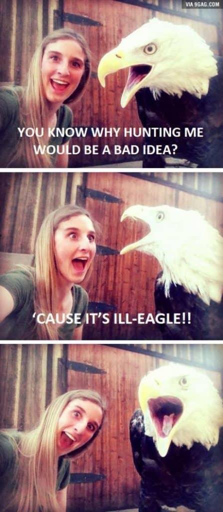 24 Jokes Hilarious Blonde 4