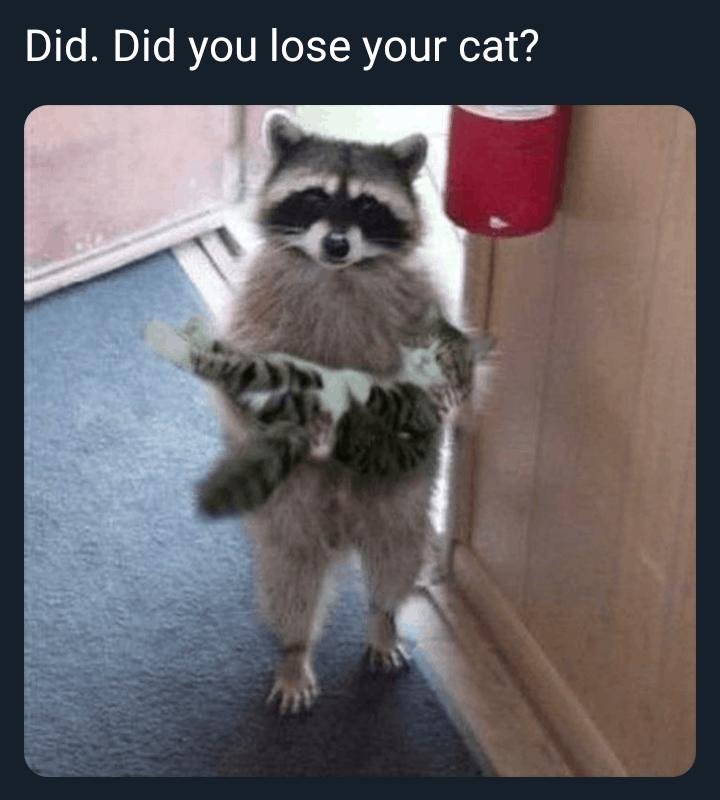 18 Memes Hilarious Humor 3