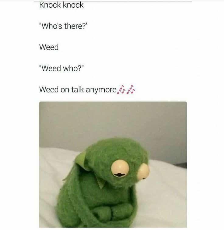 20 Knock Knock Jokes For Kids Hilarious 15