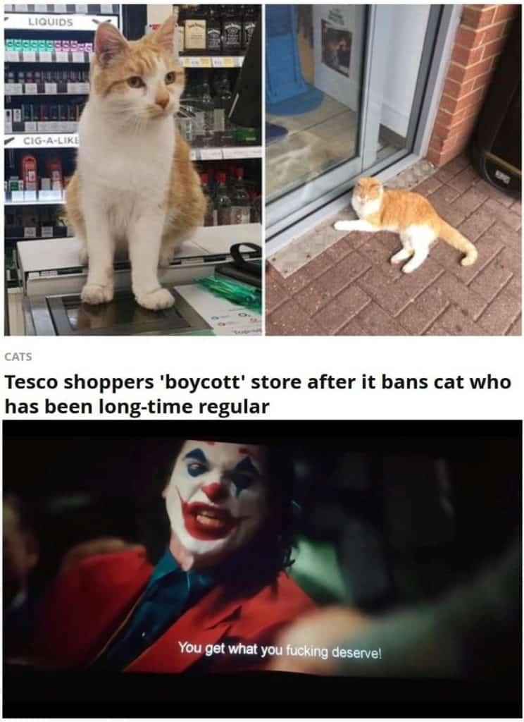 20 Memes Hilarious Clean 1