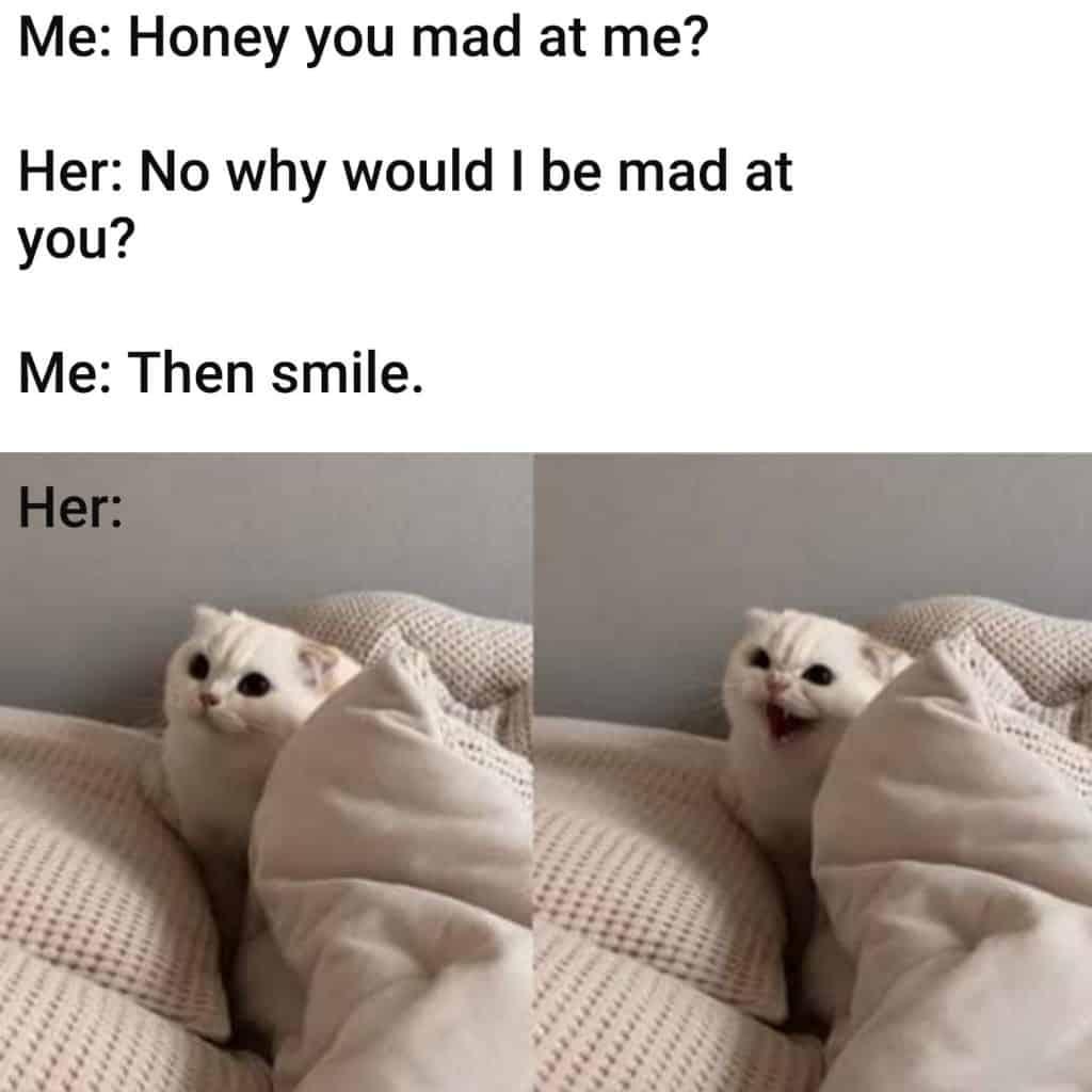 20 Memes Hilarious Clean 17