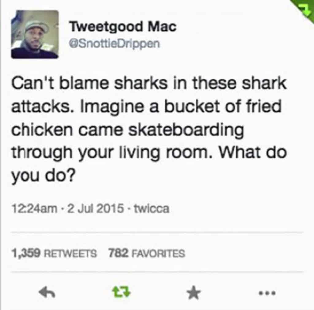 28 Memes Funny Life Posts 15
