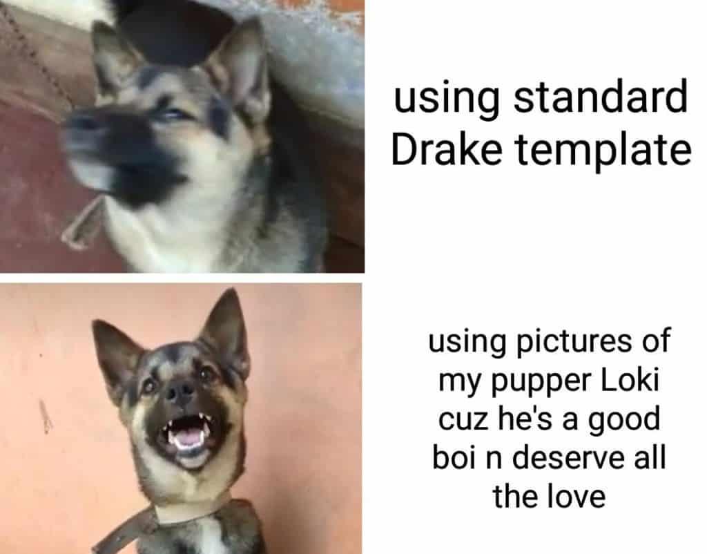 19 Memes Funny School 13