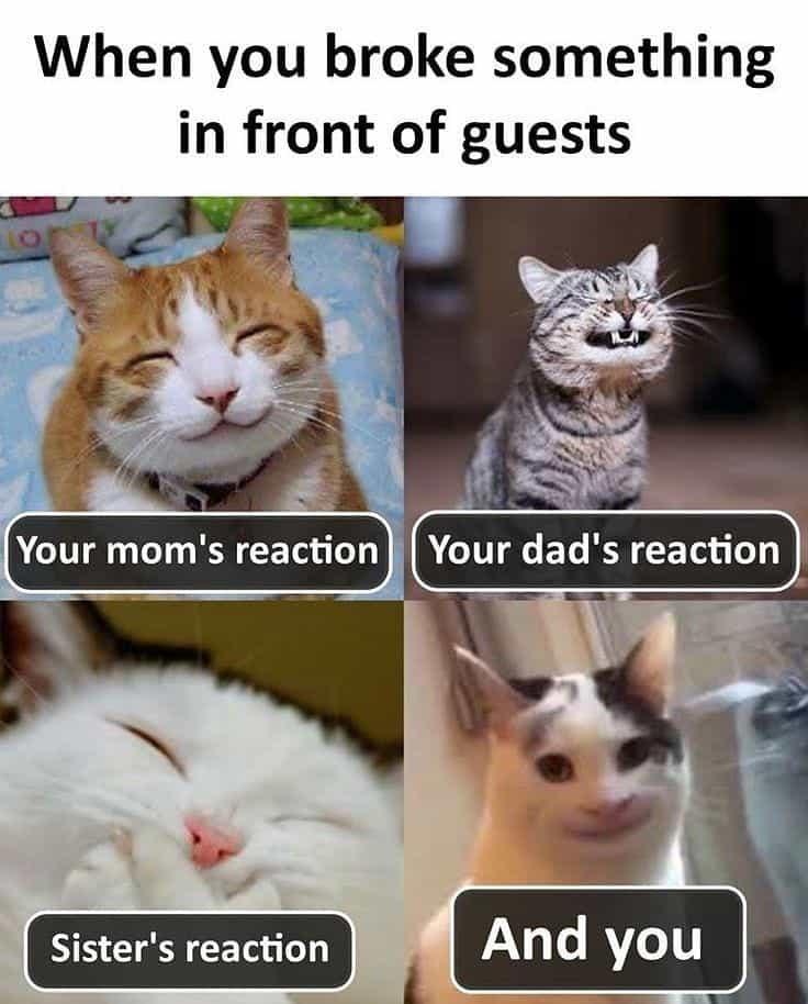 22 Funny Memes So True 12