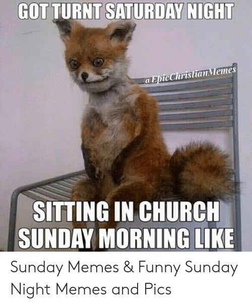 Saturday Memes 1