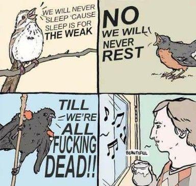 Saturday Memes Best Memes Dank Saturday Memes