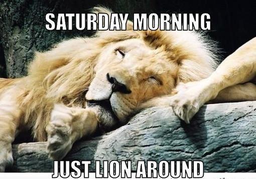 Saturday Memes Funny Saturday Memes 4