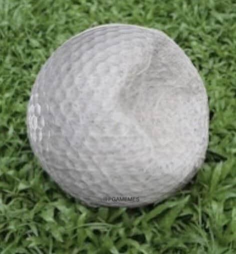 21 Tom Brady Golf Memes 10