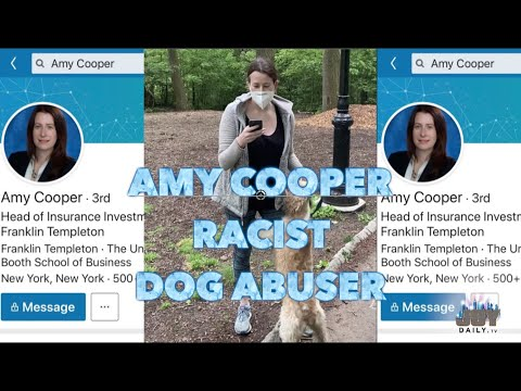 25 Amy Cooper Memes 16