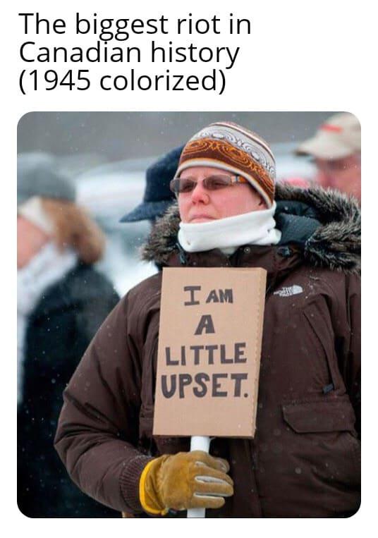 29 Riots Memes 16