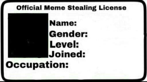 33 Meme Stealing License 12