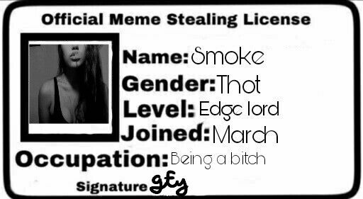 33 Meme Stealing License 8