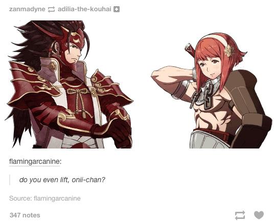 26 Fire Emblem Fates Memes 7