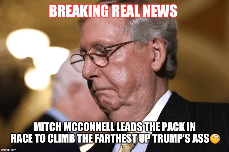 29 Mitch Mcconnell Memes 1