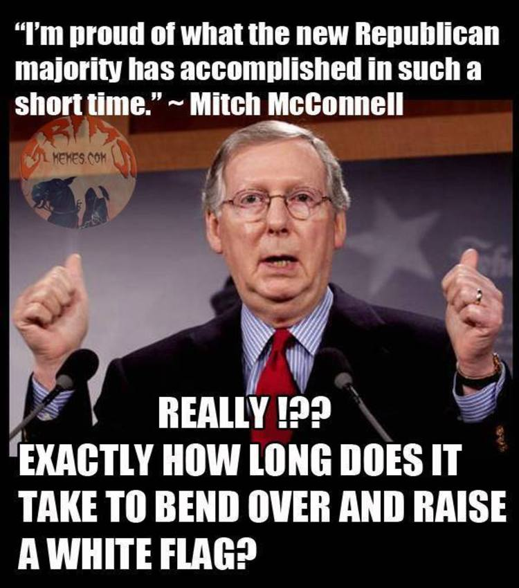 29 Mitch Mcconnell Memes 14