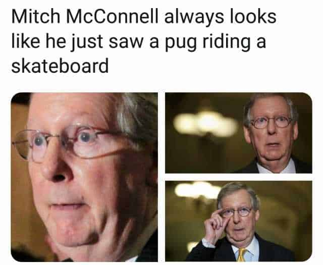 29 Mitch Mcconnell Memes 17