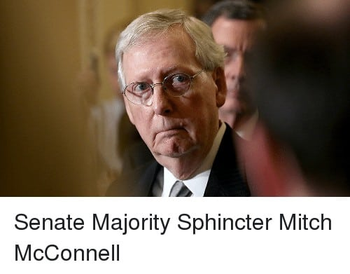 29 Mitch Mcconnell Memes 9 1
