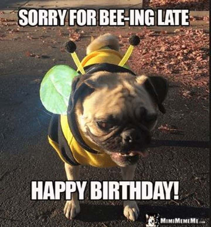 33 belated birthday meme 17