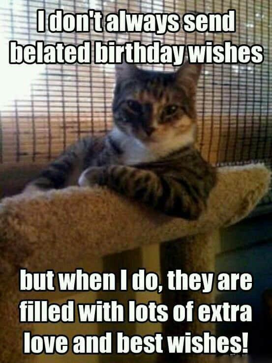 33 belated birthday meme 20