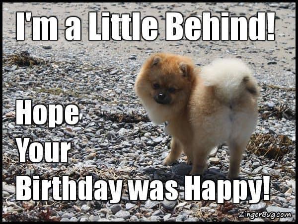33 belated birthday meme 7