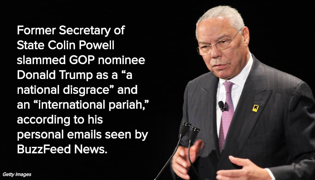 Colin Powell Meme 16