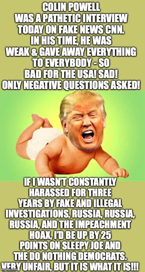 Colin Powell Meme 5