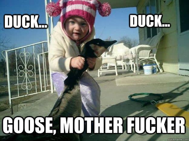 Duck Duck Goose Meme 12