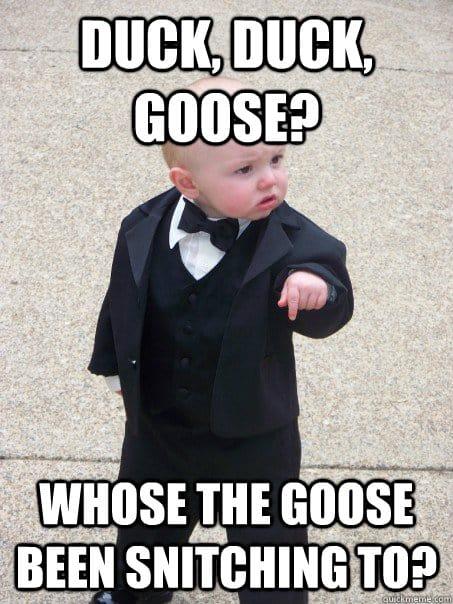 Duck Duck Goose Meme 13